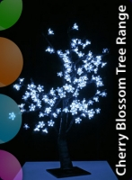 Cherry Blossom Tree Range
